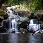 Udagama Handhapan Ella Waterfall