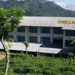 Kinellan Tea Factory & Tea Centre