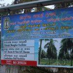 Coconut Cultural Park
