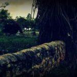 Fort MacDowall