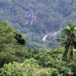 Piyangiri Ella Falls