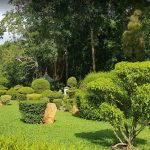 Gampaha Botanical Garden