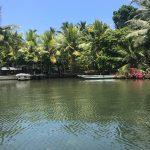 Kalapuwa Herbal Garden