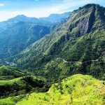 Pidurutalagala Conservation Forest